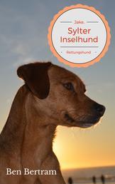 Rettungshund - Jake, Sylter Inselhund