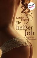 Katalin Sturm: Sexy Secretaries: Ein heißer Job ★★★★