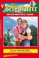 Toni Waidacher: Der Bergpfarrer 79 – Heimatroman
