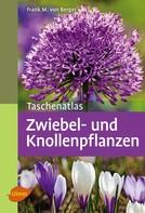 Frank M. von Berger: Taschenatlas Zwiebel- und Knollenpflanzen ★★★★★