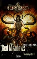 Arthur Gordon Wolf: Lovecrafts Schriften des Grauens 12: Red Meadows