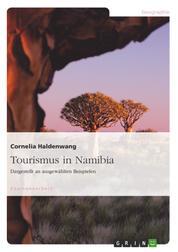 Tourismus in Namibia - Dargestellt an ausgewählten Beispielen