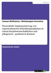 Prozesshafte Implementierung von expertenbasierter Dekubitusprophylaxe in einem betriebswirtschaftlichen und pflegerisch - qualitativen Kontext