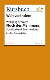 Fluch des Mammons - Schicksal und Entscheidung in der Finanzkrise
