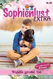 Sophienlust Extra 30 – Familienroman - Waldis große Tat