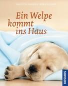Brigitte Harries: Ein Welpe kommt ins Haus