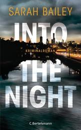 Into the Night - Kriminalroman