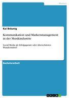 Kai Bräunig: Kommunikation und Markenmanagement in der Musikindustrie