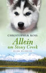 Alaska Wilderness - Allein am Stony Creek (Bd. 3)