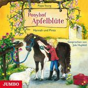 Ponyhof Apfelblüte 4. Hannah und Pinto