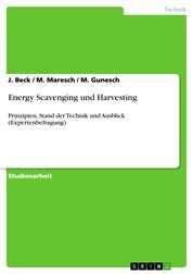 Energy Scavenging und Harvesting - Prinzipien, Stand der Technik und Ausblick (Expertenbefragung)