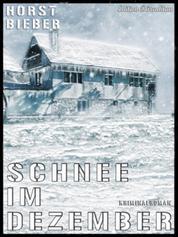 Schnee im Dezember - Cassiopeiapress Kriminalroman