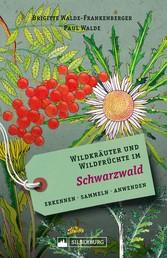 Wildkräuter und Wildfrüchte im Schwarzwald - Erkennen, sammeln, anwenden