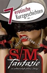 """7 erotische Kurzgeschichten aus: """"S/M-Fantasie"""""""