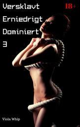 Versklavt Erniedrigt Dominiert 3 - BDSM Sammelband