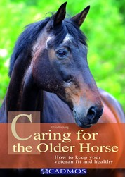 Caring for the Older Horse - How to keep your veteran fit and healthy