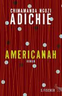 Chimamanda Ngozi Adichie: Americanah ★★★★★