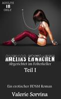 Valerie Sorvina: Amelias Erwachen ★★★
