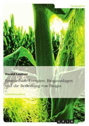 Erneuerbare Energien: Biogasanlagen und die Bedeutung von Biogas