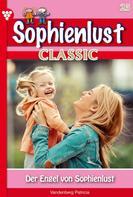 Patricia Vandenberg: Sophienlust Classic 25 – Familienroman