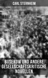 Busekow und andere gesellschaftskritische Novellen - Napoleon + Schuhlin + Meta + Die Schwestern Stork + Ulrike + Posinsky + Heidenstam + Der Anschluß + Die Hinrichtung + Vanderbilt + Yvette + Fairfax + Gauguin und van Gogh + Libussa