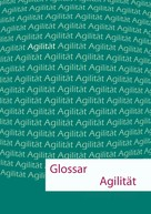Dietmar Prudix: Glossar Agilität
