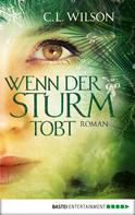 C. L. Wilson: Wenn der Sturm tobt ★★★★