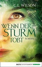 Wenn der Sturm tobt - Roman