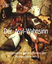 Der Asyl-Wahnsinn - Das klinische Helfersyndrom der Bundesdeutschen