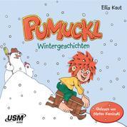 Pumuckl - Wintergeschichten (ungekürzt)