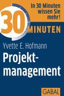 Yvette E. Hofmann: 30 Minuten Projektmanagement ★★★★