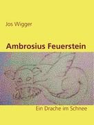 Jos Wigger: Ambrosius Feuerstein