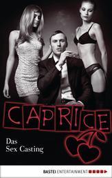 Das Sex Casting - Caprice - Erotikserie