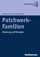 Thomas Hess: Patchwork-Familien