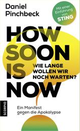 How soon is now - Wie lange wollen wir noch warten? Ein Manifest gegen die Apokalypse