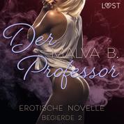 Begierde 2 - Der Professor: Erotische Novelle