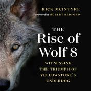 The Rise of Wolf 8 - Witnessing the Triumph of Yellowstone's Underdog - Alpha Wolves of Yellowstone: A Trilogy, Book 1 (Unabridged)