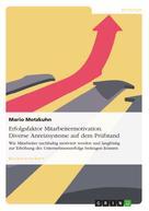 Mario Motzkuhn: Erfolgsfaktor Mitarbeitermotivation. Diverse Anreizsysteme auf dem Prüfstand