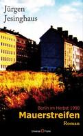 Jürgen Jesinghaus: Mauerstreifen