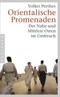 Volker Perthes: Orientalische Promenaden ★★★★★