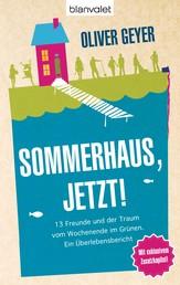Sommerhaus jetzt! - 13 Freunde und der Traum vom Wochenende im Grünen. - Ein Überlebensbericht