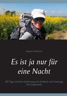 Angela Stadlbauer: Es ist ja nur für eine Nacht ★★★★