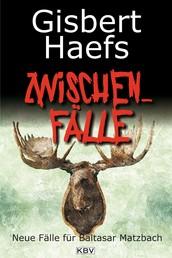 Zwischenfälle - Neue Fälle für Baltasar Matzbach