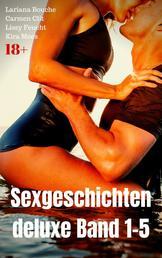 Sexgeschichten deluxe Band 1-5 - Großer Sex Sammelband!