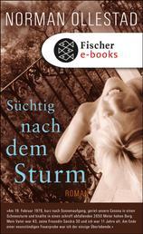 Süchtig nach dem Sturm - Roman