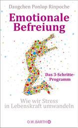 Emotionale Befreiung - Wie wir Stress in Lebenskraft umwandeln