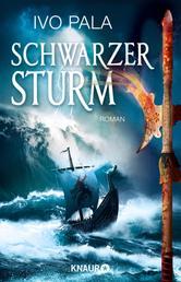 Schwarzer Sturm - Roman
