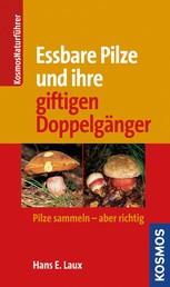 Essbare Pilze und ihre gifitigen Doppelgänger - Pilze sammlen - aber richtig
