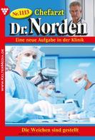 Patricia Vandenberg: Chefarzt Dr. Norden 1113 – Arztroman ★★★