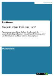 Steckt in jedem Weib eine Hure? - Vermutungen der bürgerlichen Gesellschaft, des deutschsprachigen Raumes zur Jahrhundertwende, über die Prostitution und ihre wahren Hintergründe
